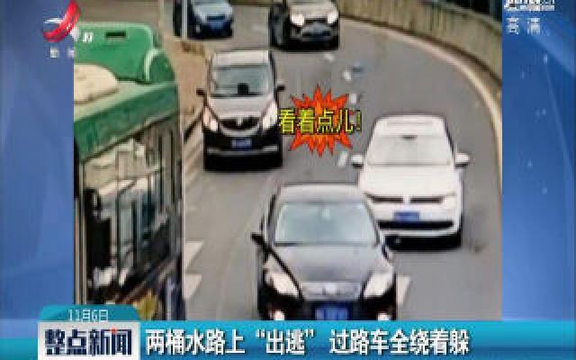 """贵州贵阳:两桶水路上""""出逃"""" 过路车全绕着躲"""