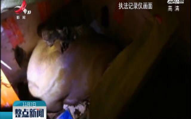 泉南高速萍乡段:客车行李仓查获野生动物黄麂