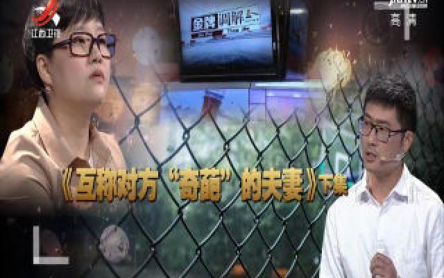 """金牌调解20191108 互称对方""""奇葩""""的夫妻(下)"""