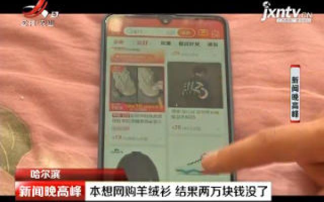 哈尔滨:本想网购羊绒衫 结果两万块钱没了