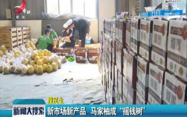 """新市场新产品 马家柚成""""摇钱树"""""""