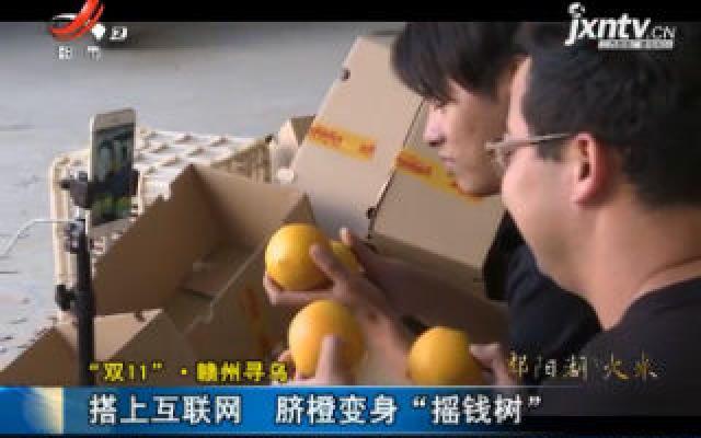 """""""双11""""·赣州寻乌:搭上互联网 脐橙变身""""摇钱树"""""""