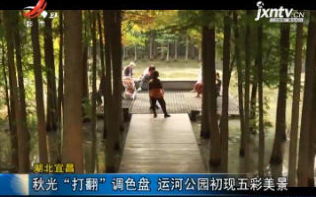 """湖北宜昌:秋光""""打翻""""调色盘 运河公园初现五彩美景"""
