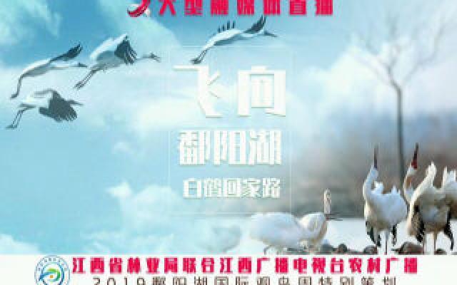 【飞向鄱阳湖 白鹤回家路】大型融媒体访谈(第二期 艰辛)