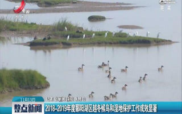2018-2019年度鄱阳湖区越冬候鸟和湿地保护工作成效显著