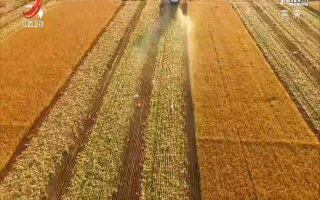内外兼修  赣字号农产品品牌效益日益显现