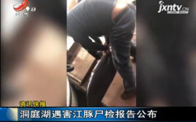 洞庭湖遇害江豚尸检报告公布