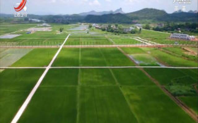 高安市启动12万亩高标准农田建设