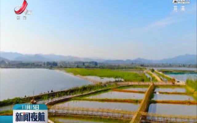 彭泽县稻鱼种养面积达12万亩