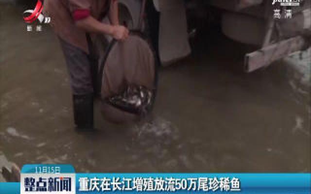 重庆在长江增殖放流50万尾珍稀鱼