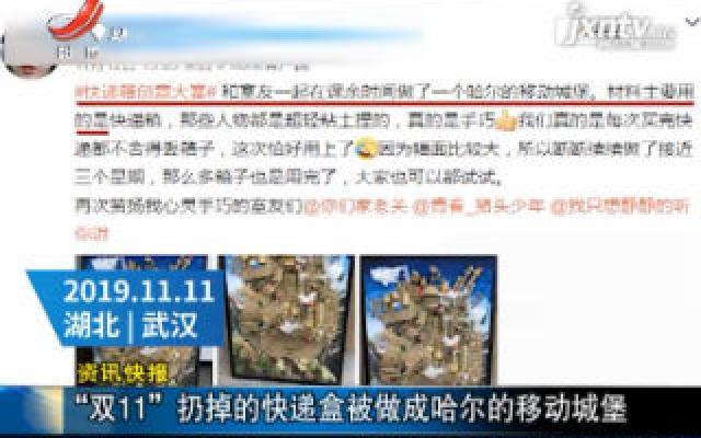 """湖北武汉:""""双11""""扔掉的快递盒被做成哈尔的移动城堡"""