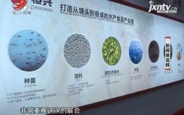 展品多样服务多元 特大型企业看好江西市场