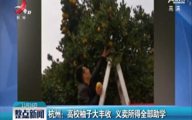 杭州:高校柚子大丰收 义卖所得全部助学