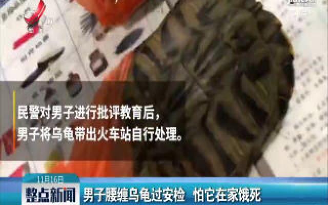 深圳:男子腰缠乌龟过安检 怕它在家饿死