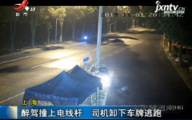 上海:醉驾撞上电线杆 司机卸下车牌逃跑
