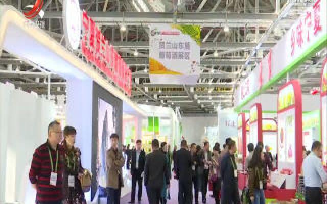 第十七届中国国际农交会:名优产品汇聚精彩 创新元素彰显亮点