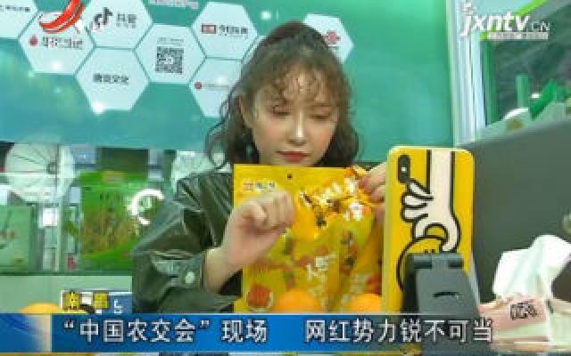 """南昌:""""中国农交会""""现场 网红势力锐不可当"""
