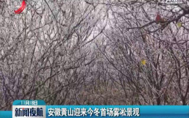 安徽黄山迎来2019年冬首场雾凇景观