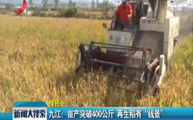 """九江:亩产突破400公斤 再生稻有""""钱景"""""""