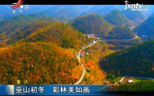 重庆:巫山初冬 彩林美如画