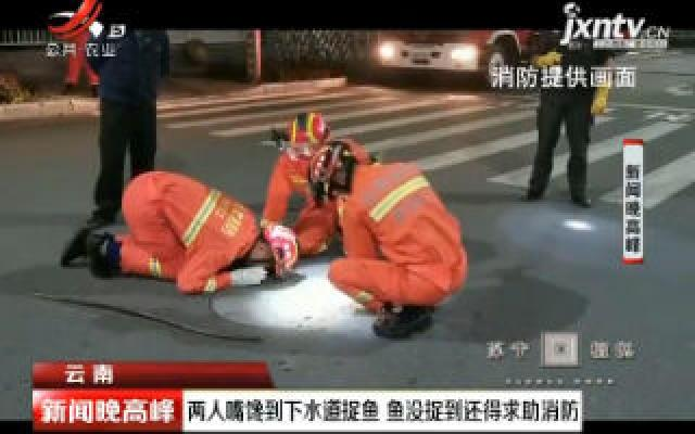 云南:两人嘴馋到下水道捉鱼 鱼没捉到还得求助消防