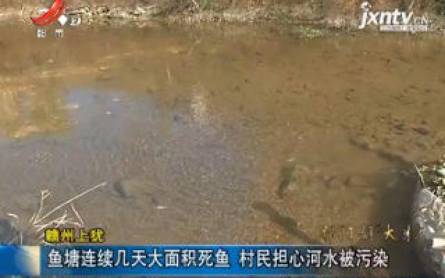 赣州上犹:鱼塘连续几天大面积死鱼 村民担心河水被污染