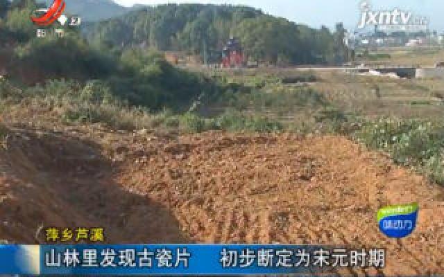 萍乡芦溪:山林里发现古瓷片 初步断定为宋元时期