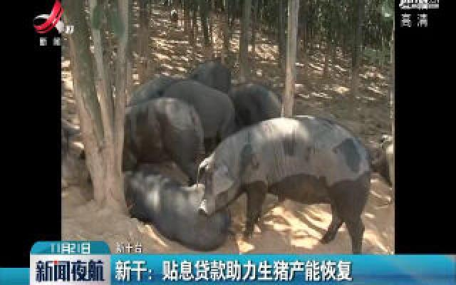 新干:贴息贷款助力生猪产能恢复