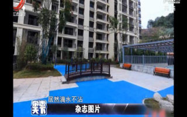 湖南长沙:一楼盘用塑胶漆刷出假湖