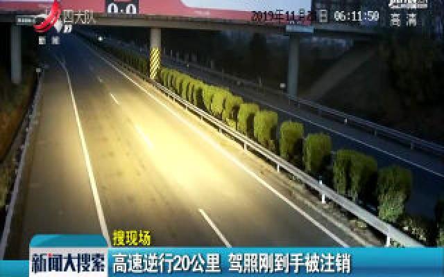 高速逆行20公里 驾照刚到手被注销