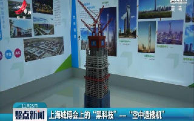 """上海城博会上的""""黑科技""""——""""空中造楼机"""""""