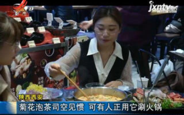 陕西西安:菊花泡茶司空见惯 可有人正用它涮火锅