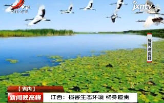 江西:损害生态环境 终身追责