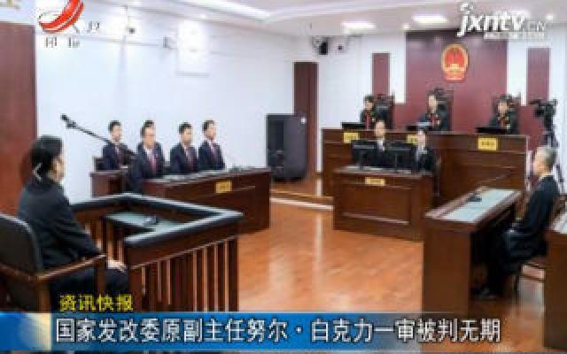 国家发改委原副主任努尔·白克力一审被判无期