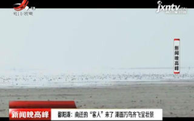 """鄱阳湖:南迁的""""客人""""来了 湖面万鸟齐飞呈壮景"""
