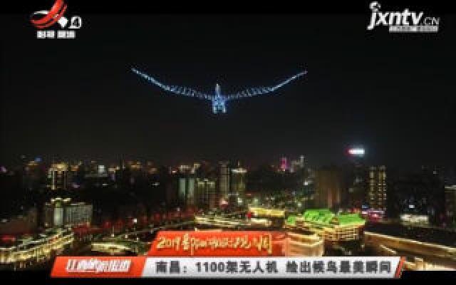 【2019鄱阳湖国际观鸟周】南昌:1100架无人机 绘出候鸟最美瞬间