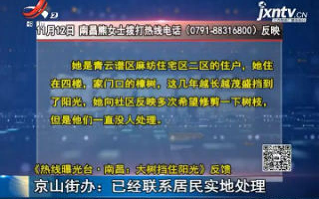 【《热线曝光台·南昌:大树挡住太阳》反馈】京山街办:已经联系居民实地处理