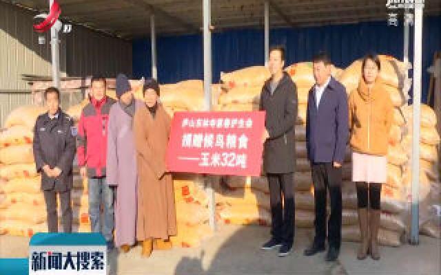 """2019鄱阳湖国际观鸟周 社会团体捐32吨""""口粮""""助候鸟越冬"""