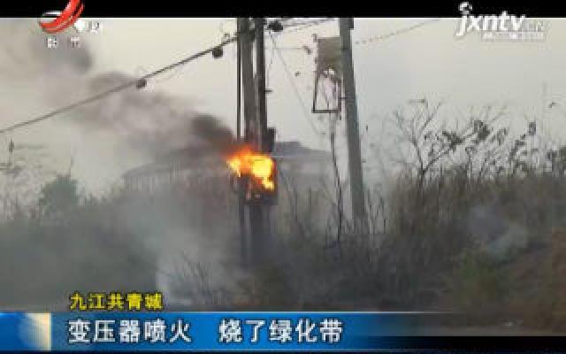 九江共青城:变压器喷火 烧了绿化带