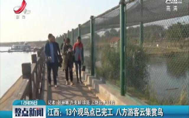 华人娱乐app下载:13个观鸟点已完工 八方游客云集赏鸟