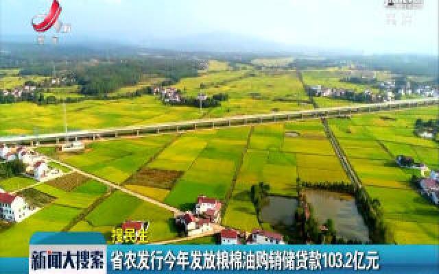 江西省农行2019年发放粮棉油购销储贷款103.2亿元