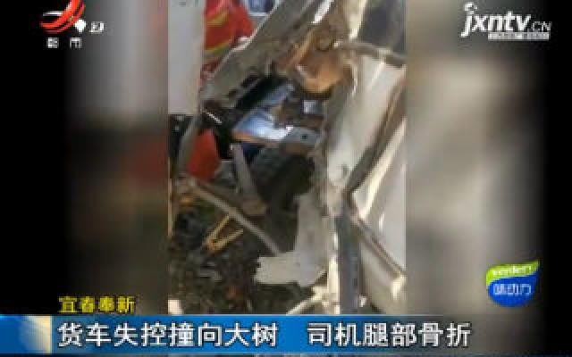 宜春奉新:货车失控撞向大树 司机腿部骨折