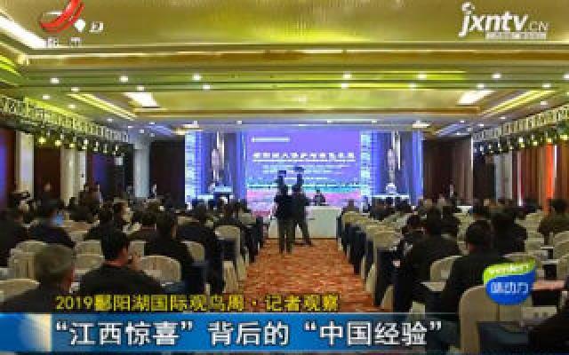 """2019鄱阳湖国际观鸟周·记者观察:""""江西惊喜""""背后的""""中国经验"""""""