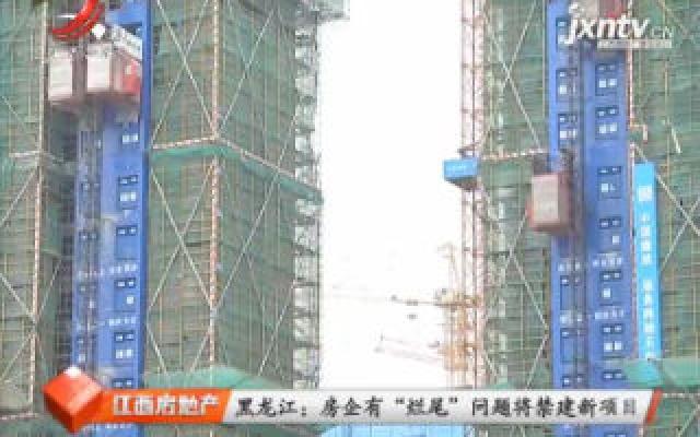 """黑龙江:房企有""""烂尾""""问题将禁建新项目"""