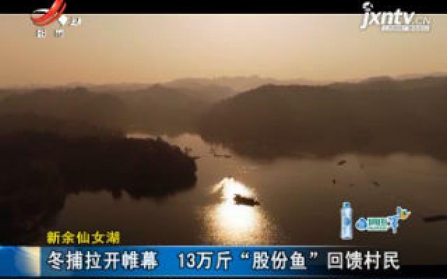 """新余仙女湖:冬捕拉开帷幕 13万斤""""股份鱼""""回馈村民"""