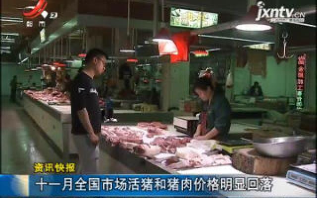 十一月全国市场活猪和猪肉价格明显回落
