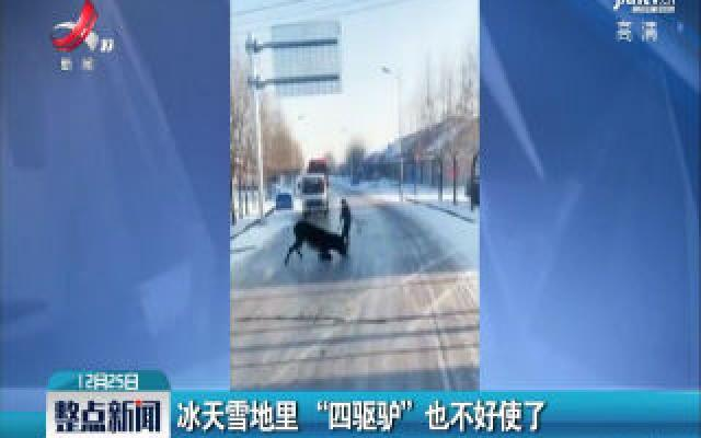 """吉林松原:冰天雪地里""""四驱驴""""也不好使了"""