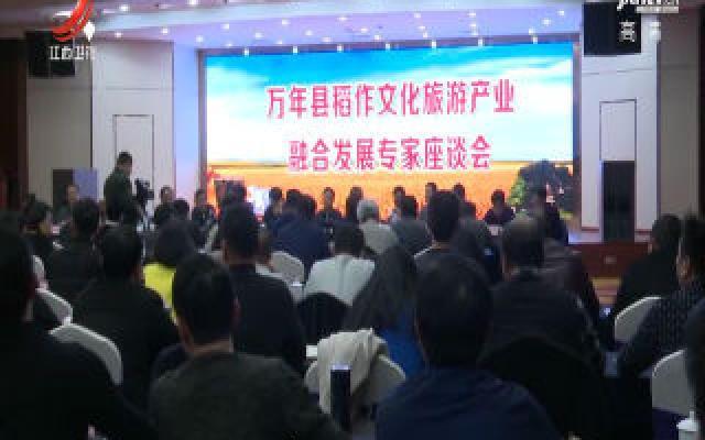 万年稻作文旅产业融合发展专家座谈会举行