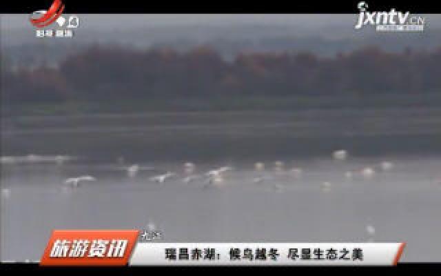 九江瑞昌赤湖:候鸟越冬 尽显生态之美
