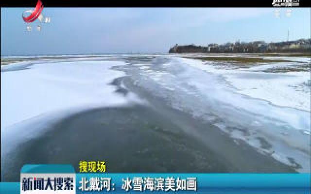 北戴河:冰雪海滨美如画